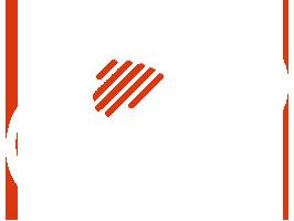 NelsonHPS logo image